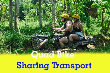 quad sharing transport